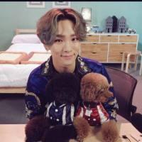 PET SHOP K-POP: Os Idols e seus bichinhos de estimação